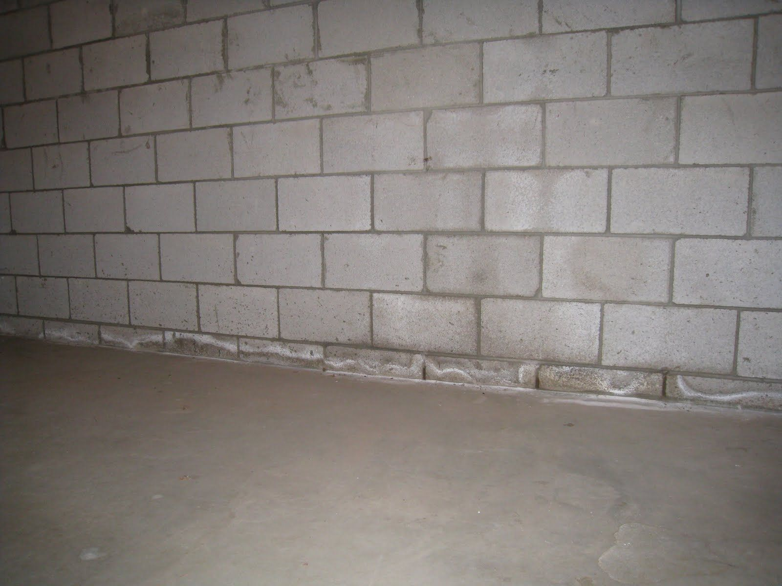 What to do when you see foundation cracks in cinder block for Block wall foundation