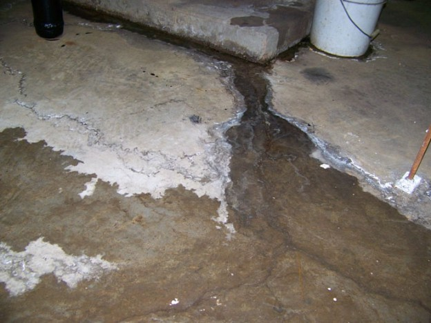homeowner tips archives everdry basement waterproofing