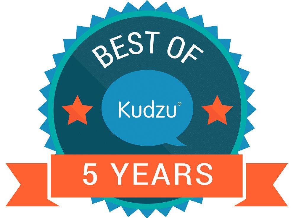 5 year badge
